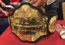 TNA World Title